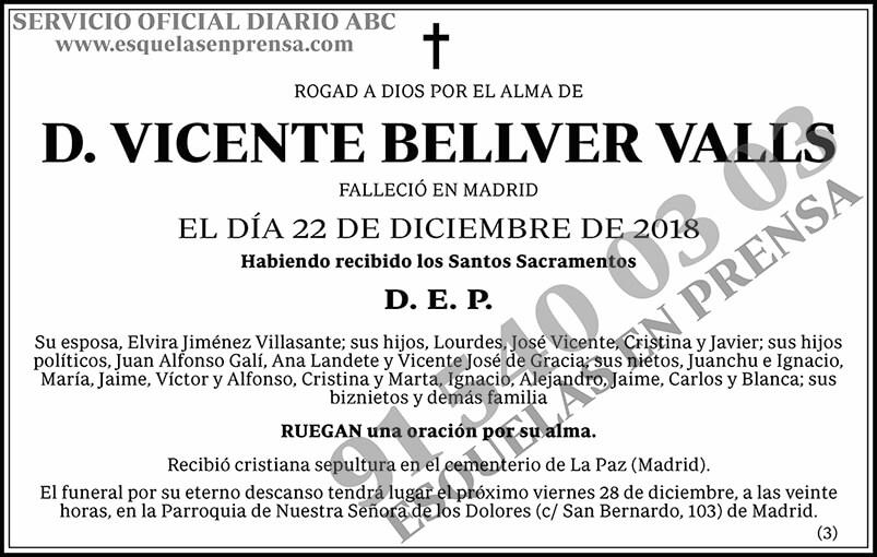 Vicente Bellver Valls